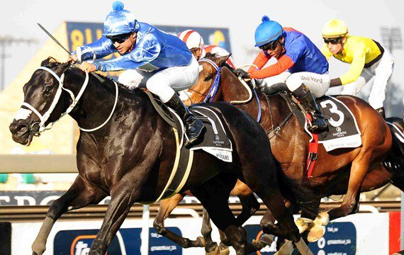 Hat Puntano - Horse Racing - South Africa