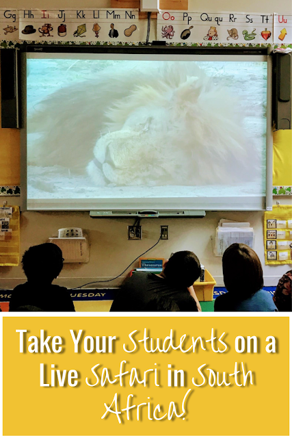 Have you been thinking about taking a virtual field trip? Take your elementary, middles, and high school students on a live safari in South Africa! Students ask questions and get answered in real time! #virtualfieldtrip #elementary #middleschool #safarilive