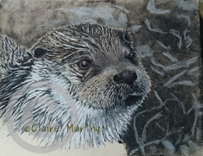 drawing of an otter demo