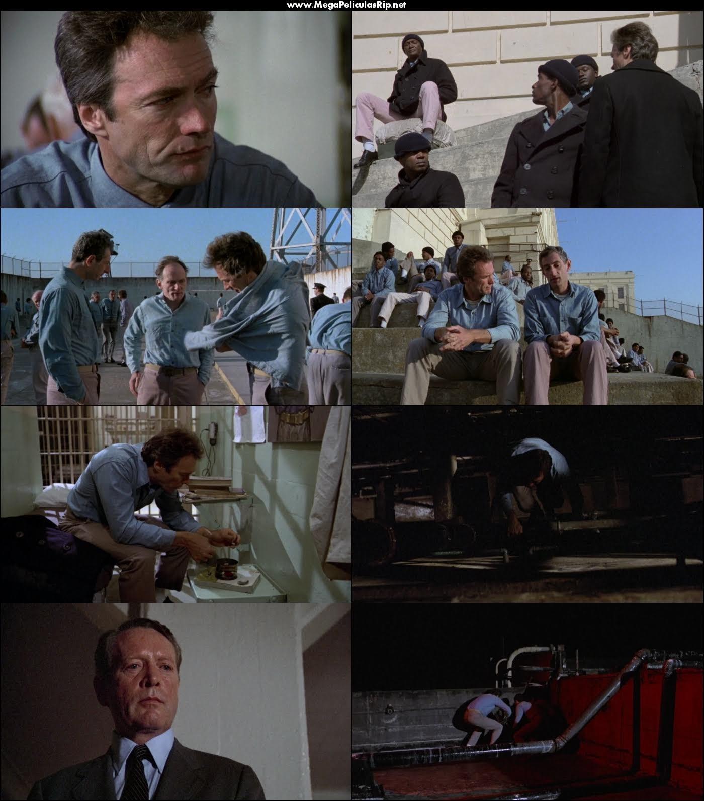 La Fuga de Alcatraz 1080p Latino