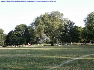 Pradera de Regent's Park