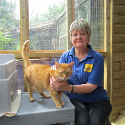 Dorothy Hyman  Cats Protection Weymouth & District Branch