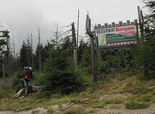 Magurka Wiślańska (1140 m n.p.m.) - szczyt zwornikowy w głównym grzbiecie pasma Baraniej Góry.