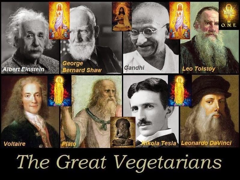 O Sol Interno Vegetarianos Veganos Famosos Vegetarian