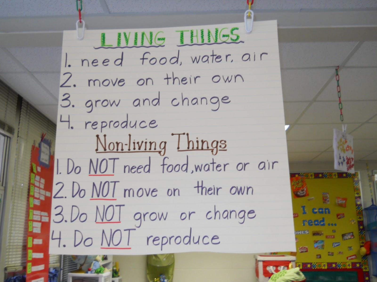 Krazy In Kindergarten Living And Nonliving