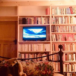 Bookshelves, life on pig row, pig row