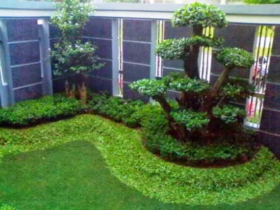 Contoh Model Taman Minimalis Sederhana