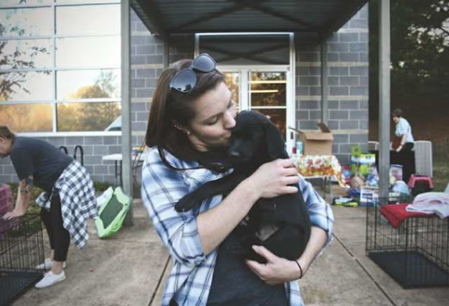 hometown animal rescue