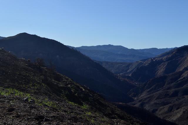 Oso Canyon