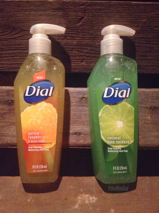 Review & Giveaway: Dial Deep Cleansing Moisturizing Hand Soap-- 5 Winners | Ends 3/18