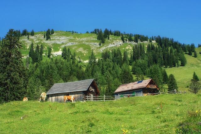 Muchas zonas rurales de Austria están dominadas por granjas que han estado en familias durante años.