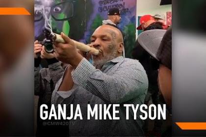 Tyson: Meunyo Na Ureung Meupake, Achie Yu P'iep Ganja, Pasti Hana Dawa Le