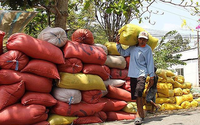 SunRice thâu tóm nhà máy chế biến gạo của VN