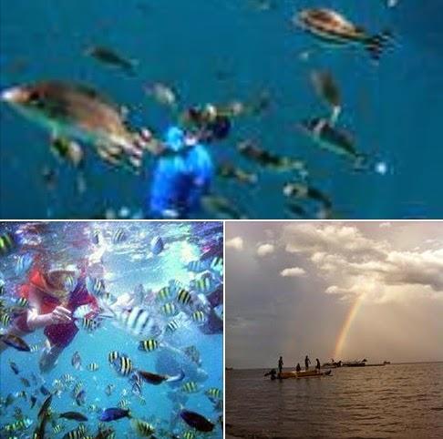 Bangsring Underwater Banyuwangi Jatim