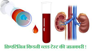 creatinine-kidney-blood-test-in-hindi