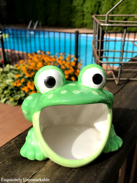 Frog Scouring Pad Holder