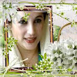 Benazir Bhutto Shaheed PPPP Profile Pictures