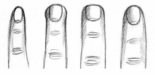 ہاتھ کی انگلیوں اور آپ کی شخصیت