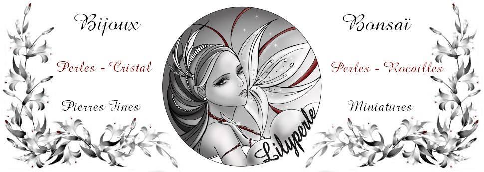 lilyperle bijoux mode chez.xyz