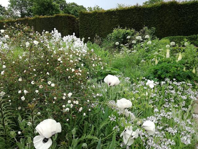 White Garden, biały ogród