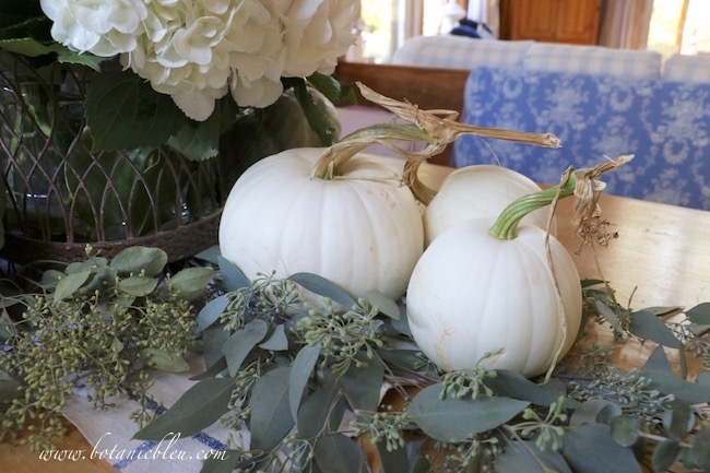 white-pumpkins-seeded-eucalyptus-fall-table-display