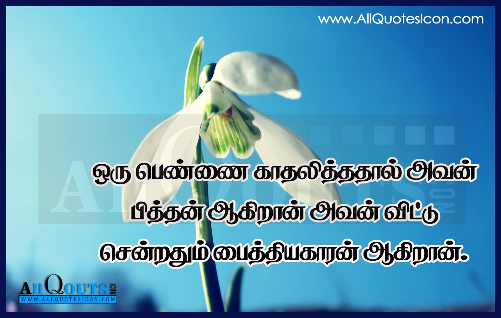 Beautiful Images With Quotes On Life In Tamil Joshviewco
