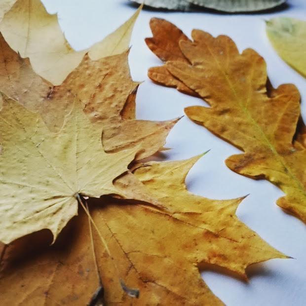 Jesienne DIY z liści