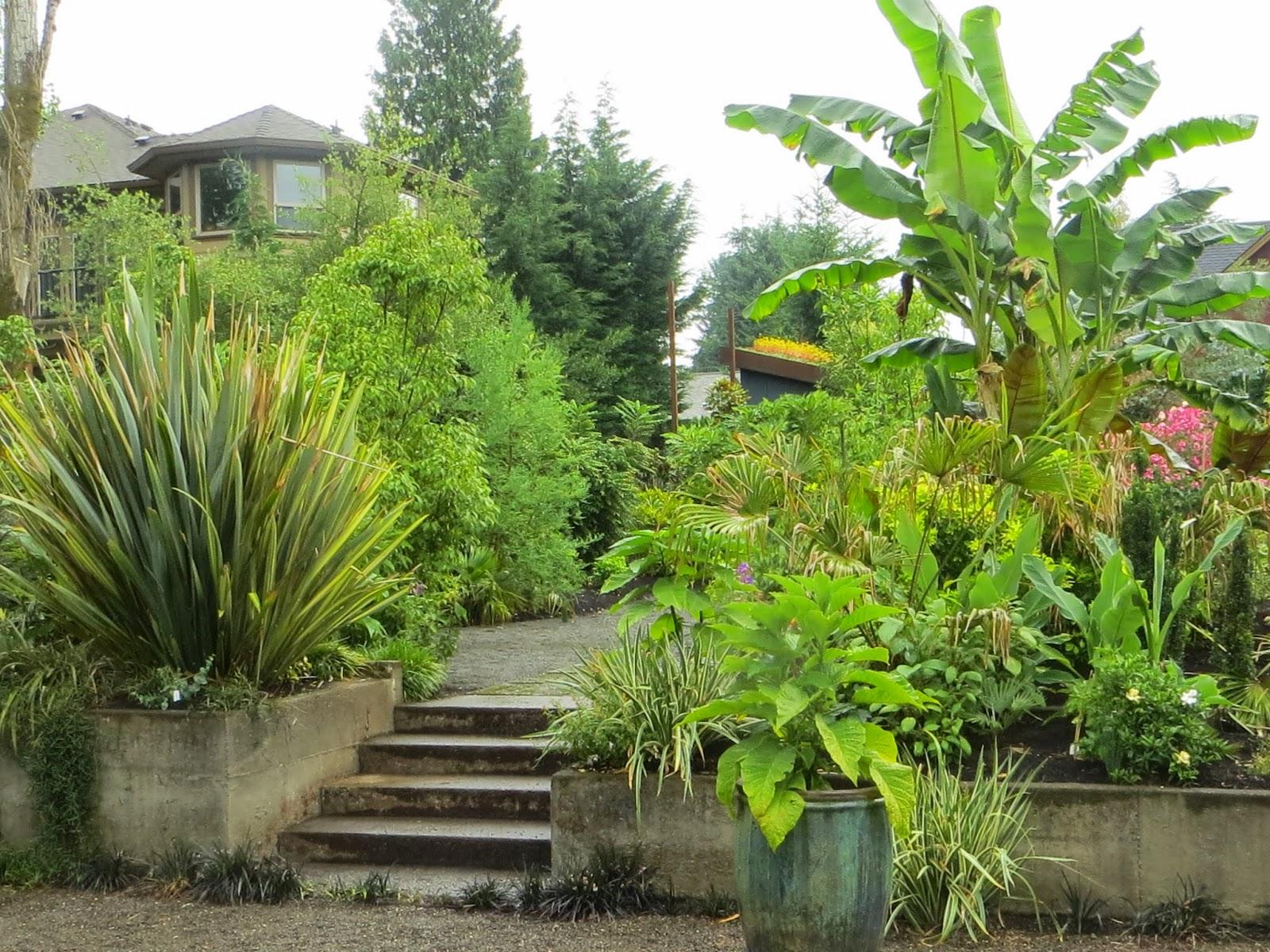 Garden blogger 39 s fling portland kuzma garden for Outer garden