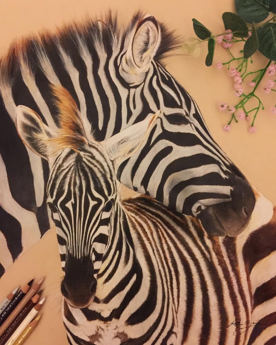 14-Zebra Mother and Baby-Robin-Gan-Realistic-Color-Pencil-Animal-Drawings-www-designstack-co