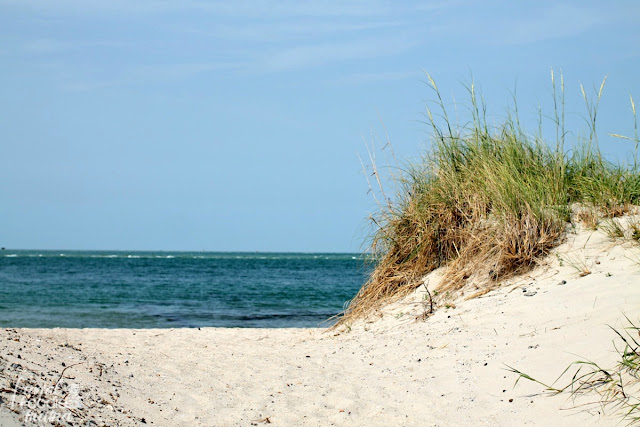 One of the highlights of visiting Ocracoke Island in the Outer Banks is to take in and enjoy the 16 miles of pristine, uncrowded beaches.