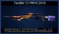 Tactilite T2 PBWC2019