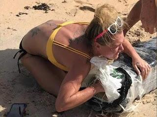 La policía de Florida busca a una mujer rubia que se apoderó de uno de los paquetes de marihuana que llegó a las playas tras el paso de Florence.