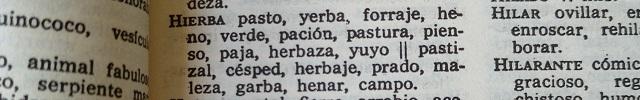 Palabras que empiezan por H