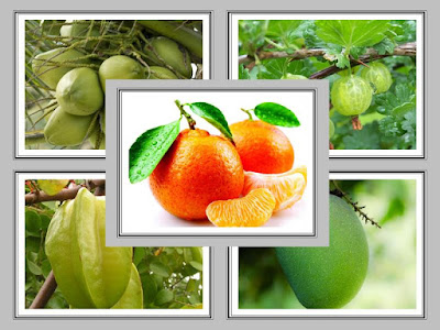30 fruit names English to Hindi