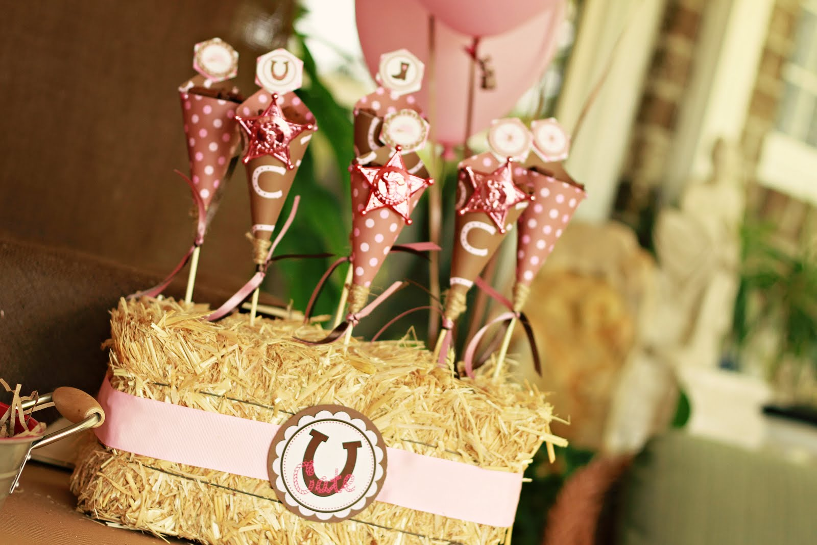Birthday Birthday Party Ideas: Kara's Party Ideas Pink Cowgirl Party!