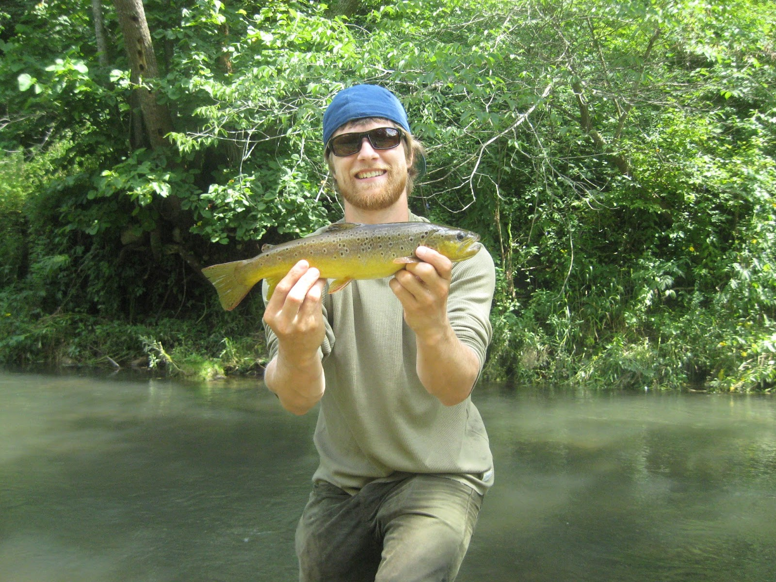 Minnesota driftless fly fishing trip report darn good for Driftless fly fishing