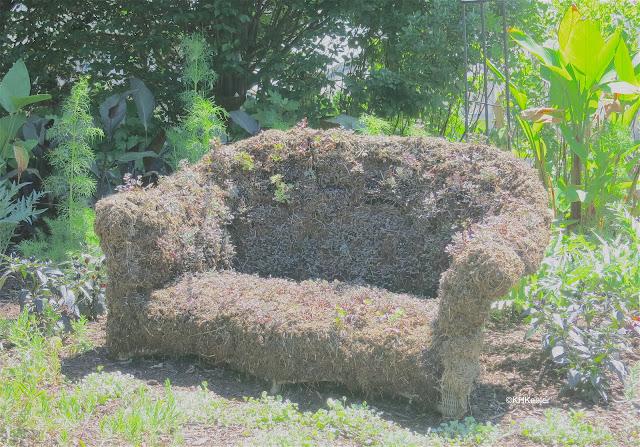 plant-covered sofa