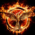 Mockingjay Part 1: Movie Review