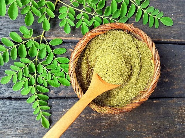 Moringa - The Herb That Helps You Treat Diabetes And Regulates Blood Sugar
