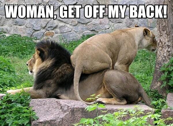 Teen ass porn gorilla