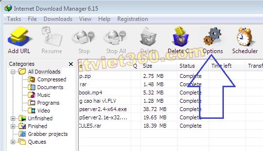 Options Internet Download Manager
