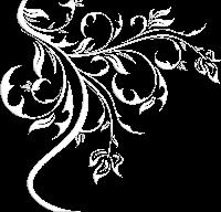 arabesco cinza