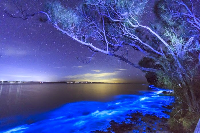 1. The Jervis Bay, New South Wales, Australia - Top 10 Unusual Beaches