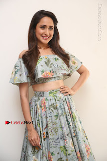Actress Pragya Jaiswal Stills in Floral Dress at turodu Interview  0014.JPG