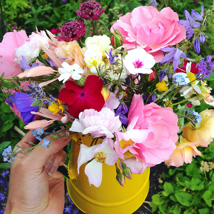 Freshly picked flowers by Adventures & Tea Parties