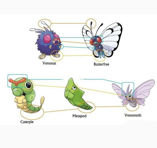 Butterfree como Venomoth