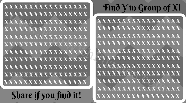 Finding Y in Group of X, Picture Puzzle