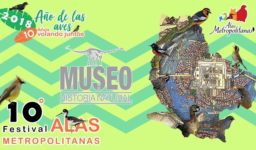 Festival Alas Metropolitanas: Museo de Historia Natural