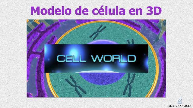 Celula eucariota en 3d para android