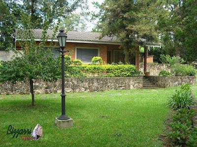 Muro de pedra rústica com o gramado com grama São Carlos com a casa de tijolo a vista.